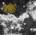 [ZDR 044] Deathlike Silence - Deathlike Silence / CD