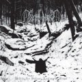 Demoncy - Within the Sylvan Realms of Frost / CD