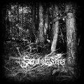 Sea of Trees - Aokigahara / CD