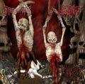 Dysentery / Gutrot - Excruciatingly Euphoric Tormen / CD