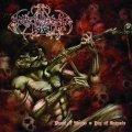 Avenger - Feast of Anger / Joy of Despair / CD