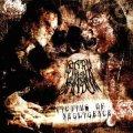 Dark Man Shadow - Victims of Negligence / CD