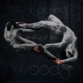 Whispering Woods - Perditus et Dea / CD