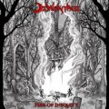Demontage - Fire of Iniquity / CD