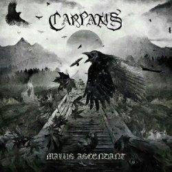 画像1: Carpatus - Malus Ascendant / SlipcaseCD